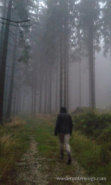 nebel im waldviertel beim wandern