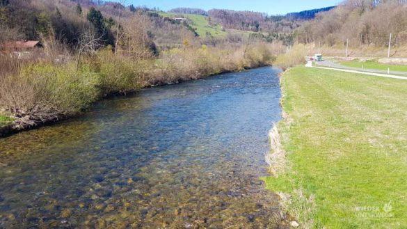 Naturidyll Pielachtal Steinschalerhof Web (230 Von 323)