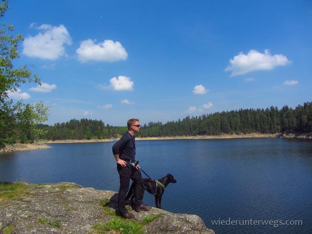 Ottensteiner Stausee: Einer der Waldviertler NaturStauseen