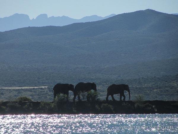 glamping südafrika (8 von 21)
