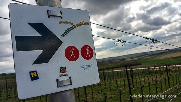 weinberg walking gaweinstal 03042015 (1 von 15)