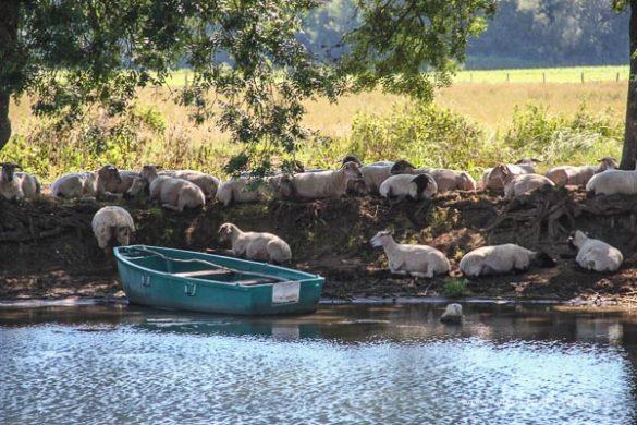Mit Dem Hausboot Unterwegs   Bericht (36 Von 57)