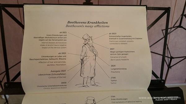 Beethovens krankheiten baden