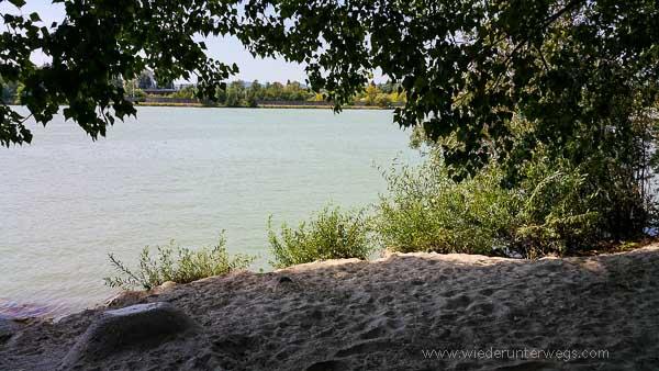 Donauinsel Hundebaden sandstrand