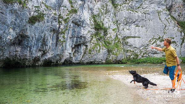 Wandern und baden mit hund in de schwarza