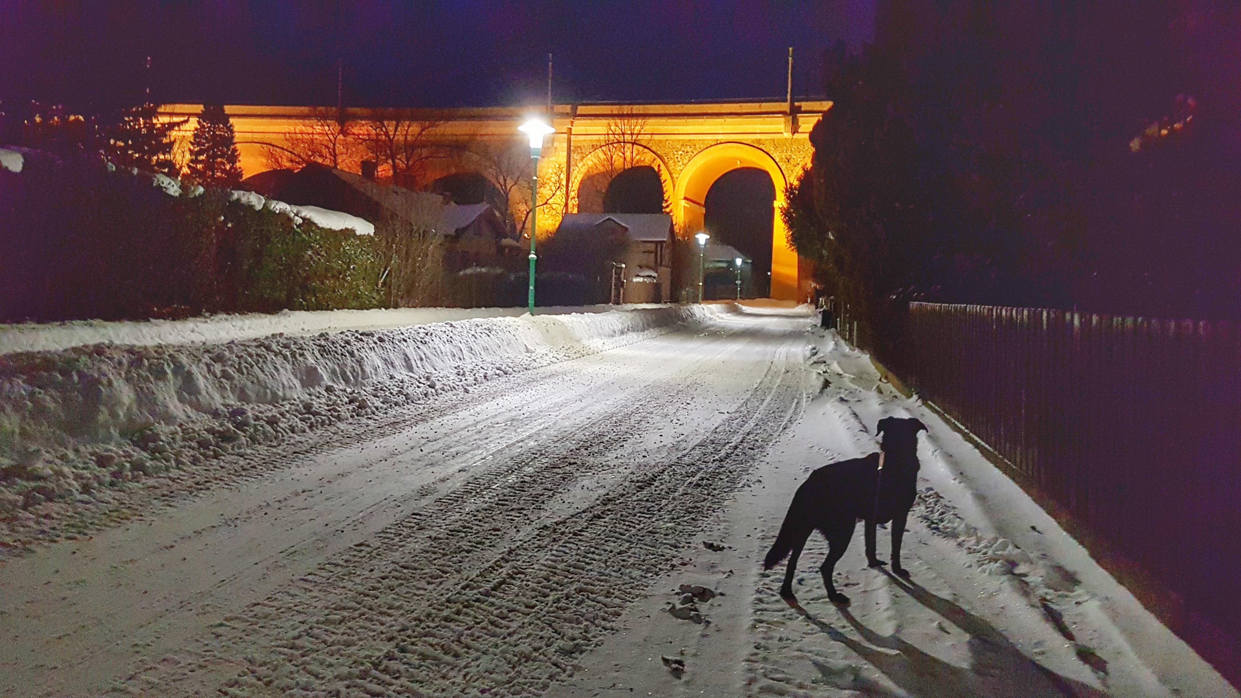payerbacher viadukt