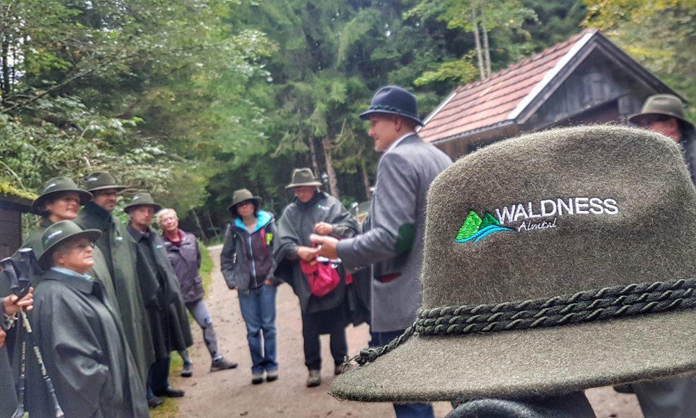 Waldness Waldbaden Hut Almtal