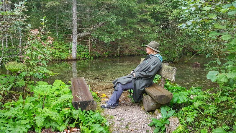 Waldness am Fluss sitzen Waldbaden