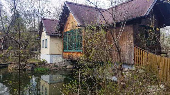 Naturidyll Pielachtal Steinschalerhof Web (37 Von 323)