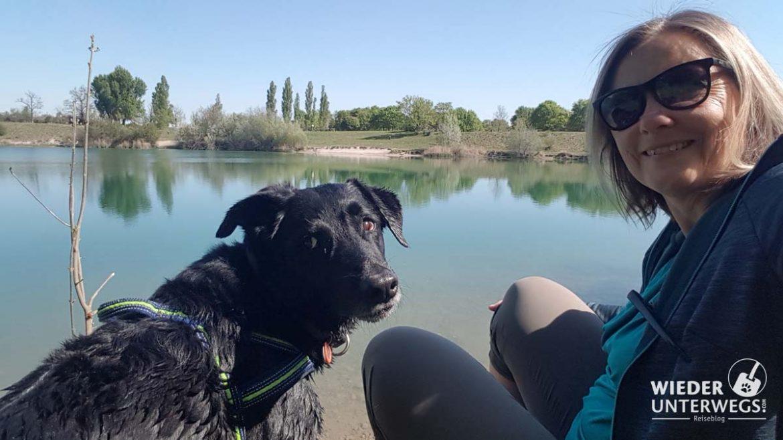 Hund am Teich