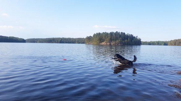 Campingplätze Schweden Web (15 Von 57)
