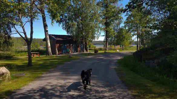 Campingplätze Schweden Web (55 Von 57)