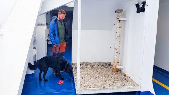 Fähre Schweden Hund Trelleborg Rostock Web (45 Von 56)
