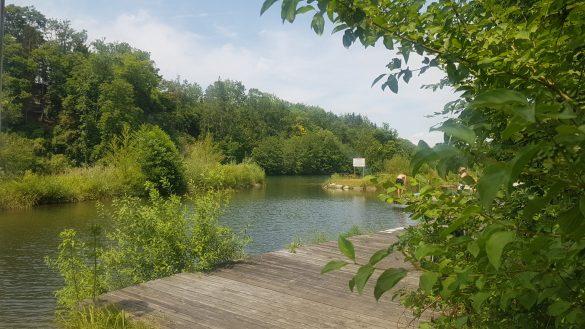 Flussbaden Niederösterreich Ybbs