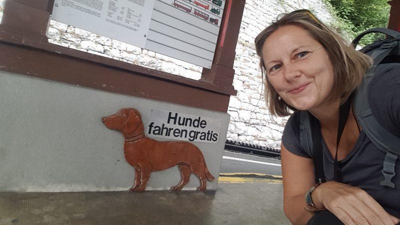 brienzer rothornbahn gratis hunde schild