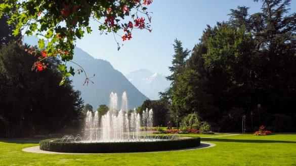 Schweiz Web 8250879