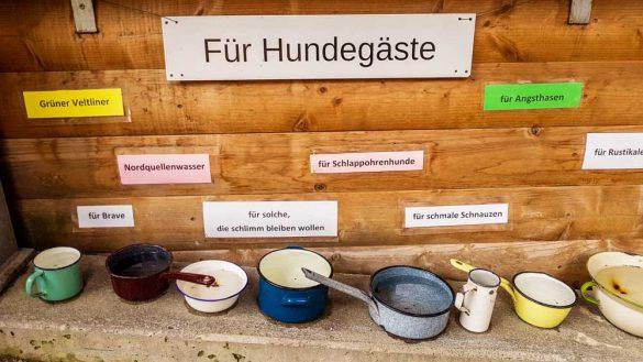 Waldviertel Ausflugsziele 2018 (66)