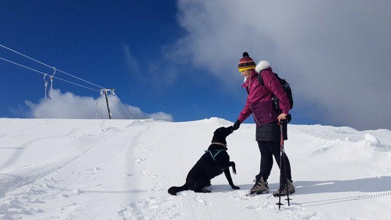 tauplitz lawinenstein winterwandern