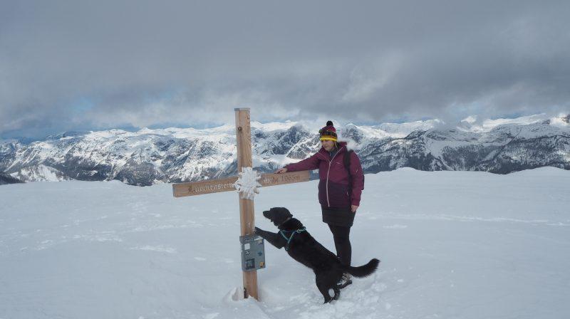 Gipfelkreuz Lawinenstein mit Hund