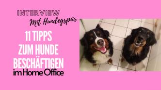Hunde beschäftigen im Home office