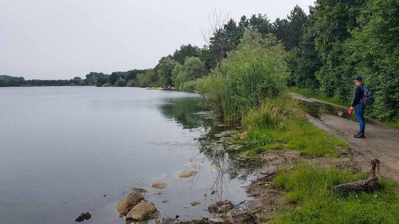 Großer Viehhofner See