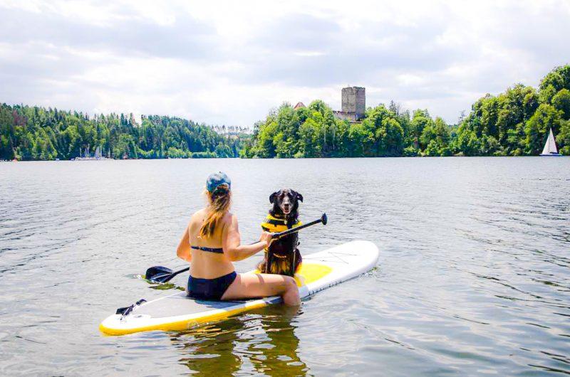 SUP mit Hund im Sitzen Stand Up Paddle