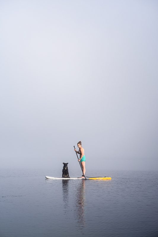 stand Up paddle mit HUnd