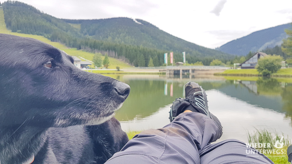 hund teichalm almenland