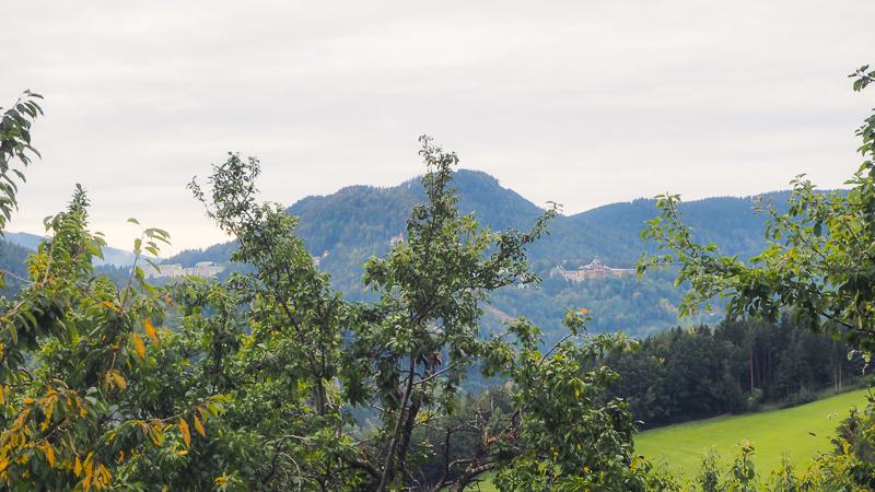 Blick vom Althammerhof Semmering