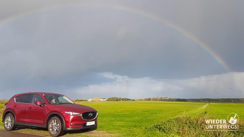Holland mit Hund und Mazda