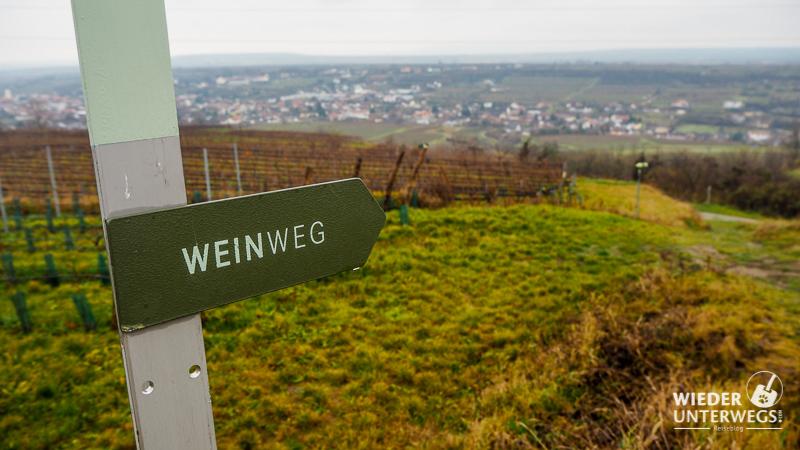 weinweg langenlois winterwanderung in niederösterreich