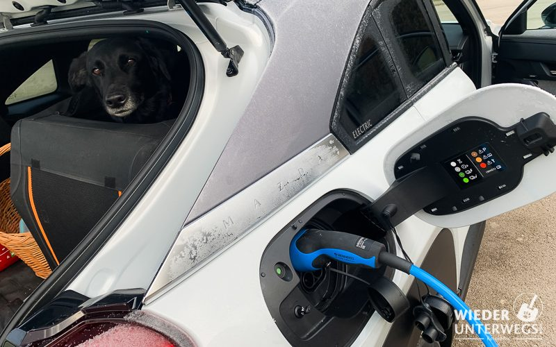 Ladevorgang EVN Ladesäule im Elektromazda mit Hund
