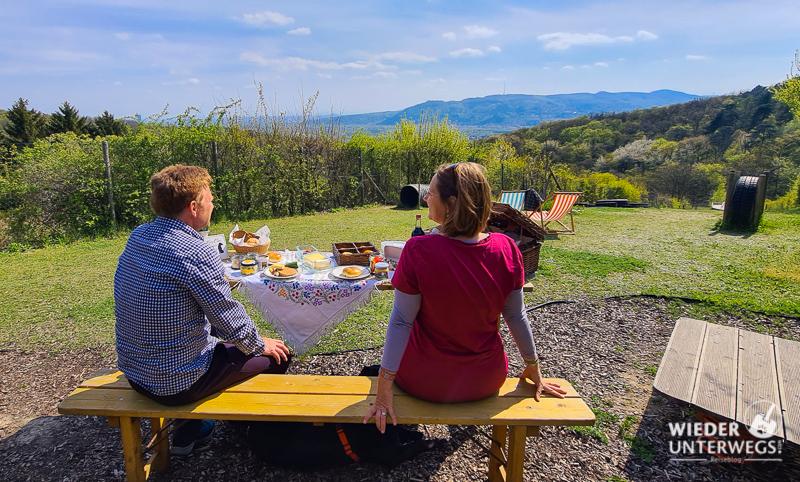 Hundezone Bisamberg mit Picknick