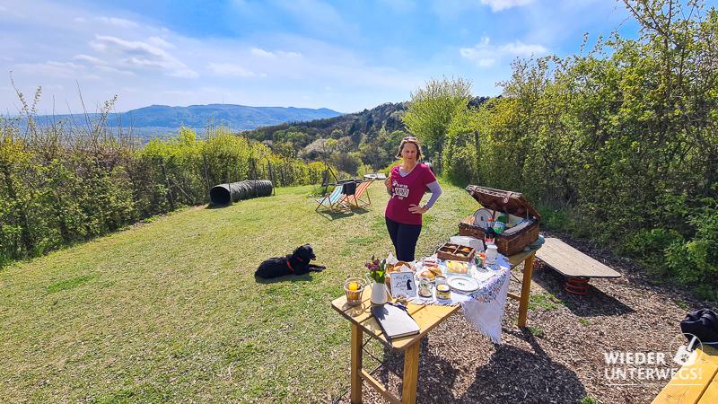 Picknick in der personal dog zone bisamberg