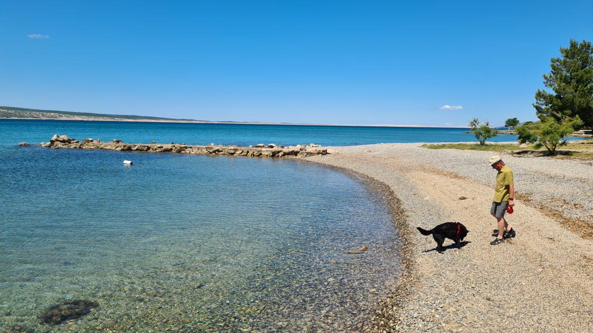 Strand paklenica mit hund spielen