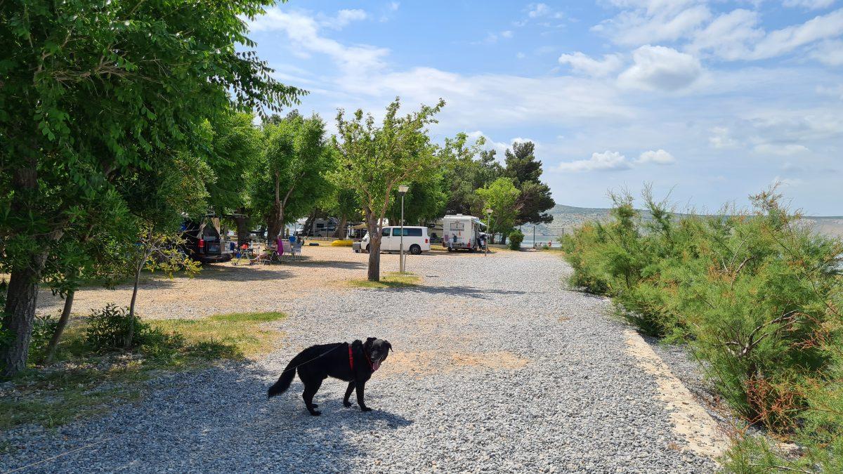 campingplatz nationalpark paklenica