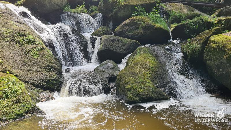 lohnbachfall waldviertel wasser moorig