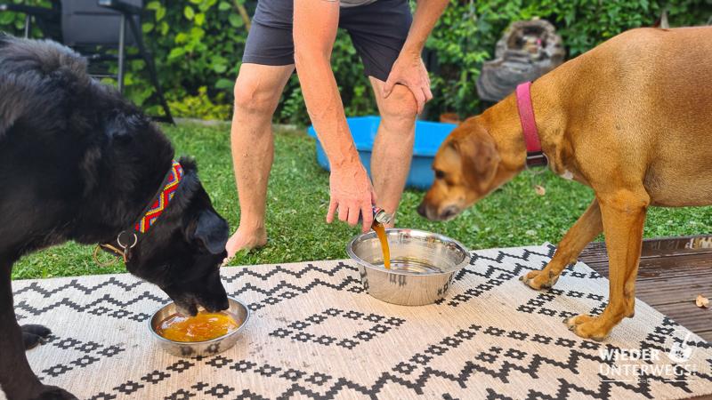 Rinti Drinki höhere Konzentration Hunde Trinkwasser