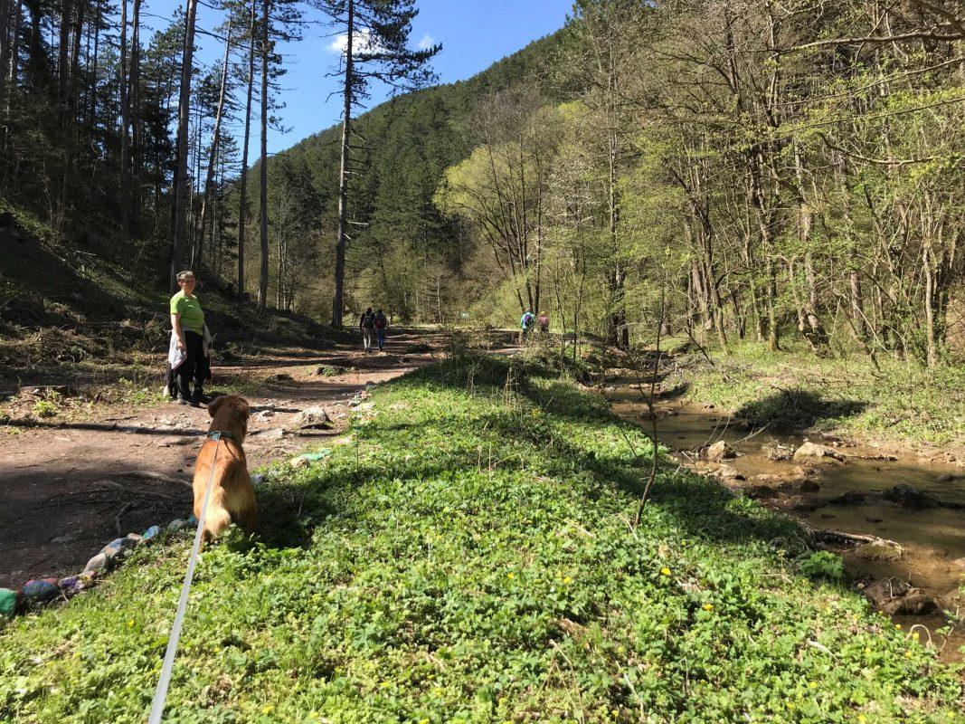 hundeurlaub wandern wiener alpen