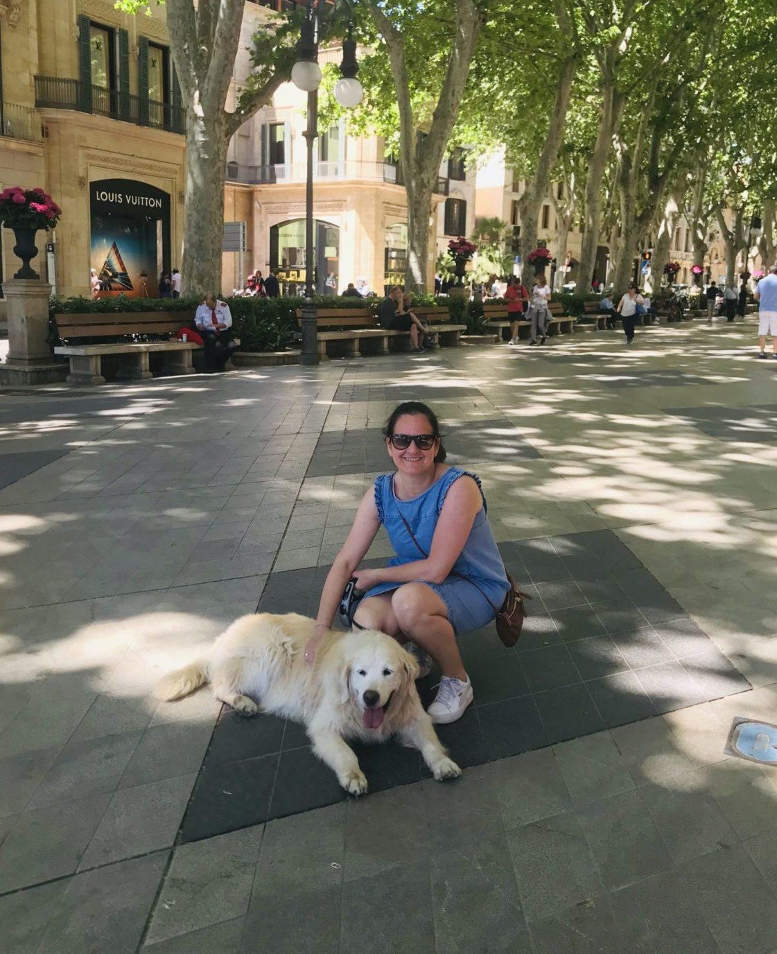 urlaub mit hund reisebüro team vela on tour