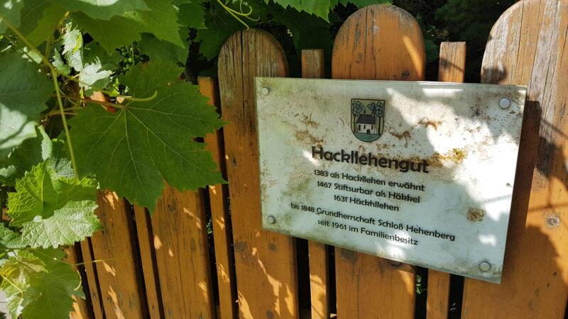 Riesis Waldschule