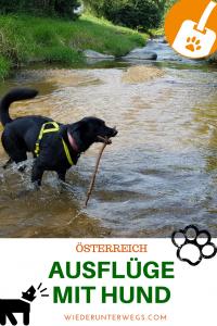 Ausflüge mit Hund in Österreich - Wiederunterwegs Reiseblog Urlaub mit Hund