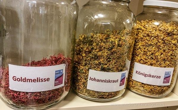 Bad Kreuzen_TEM_Marienschwestern_Mai2016_WEB (22 von 84)