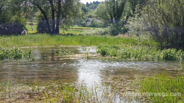 Bela Krajina Slowenien Mai2016 WEB (26 Von 261)