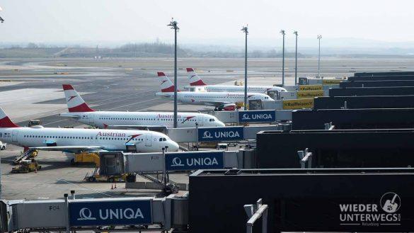 Besucherwelt Flughafen Wien Web (57 Von 89)