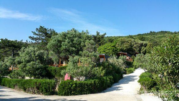 Camp Slatina Cresj Mai 2016 WEB (14 Von 18)