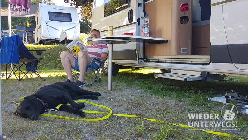 camping hund schläft vor bus