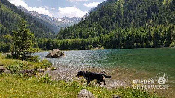 Camping Österreich Web 2017 (778 Von 973)