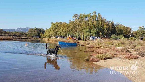 Campingplätze Sardinien Web Artikel (20 Von 116)