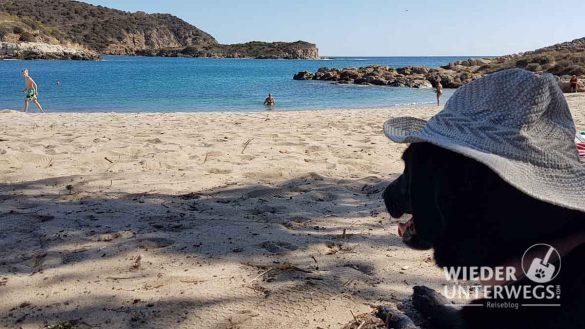 Campingplätze Sardinien Web Artikel (90 Von 116)